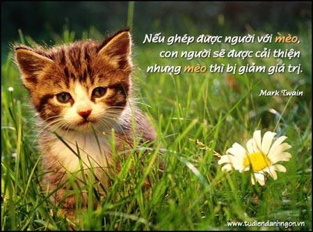 Danh nhân - Danh ngôn Mark Twain - Nếu ghép được người với mèo, con người sẽ được cải thiện nhưng mèo thì